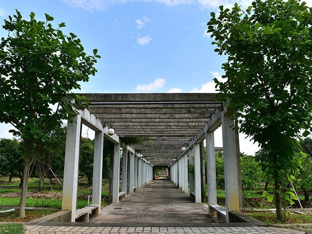 Huerta del campo de fuente
