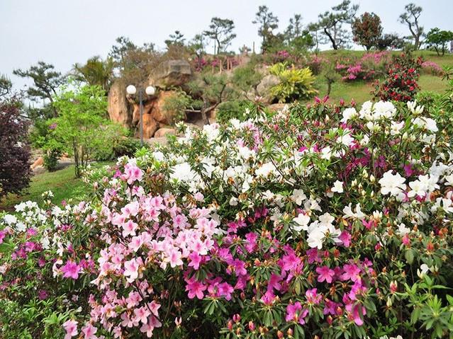 Fuente de jardín de campo