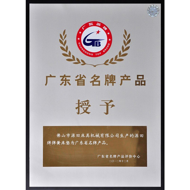 Guangdong Famous Brand Product Mattress